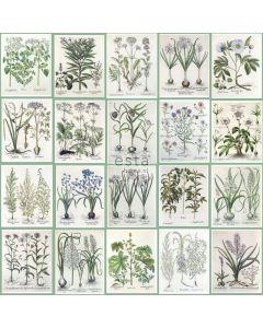 158826 Greenhouse Rasch-Textil Vliestapete