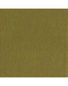 375124 Sundari Eijffinger