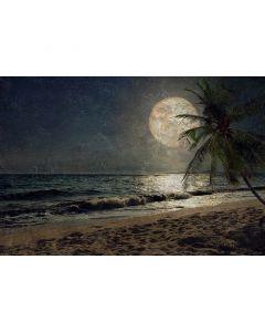 DD117605 Atelier 47 Fototapete, Beach at Night 1