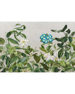 DD118075 Atelier 47 Fototapete, Botanic Sketch 2