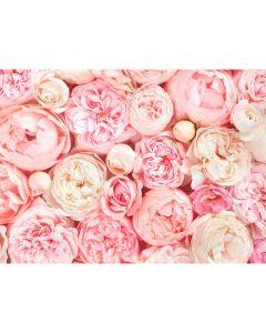 DD118522 Designwalls Fototapete, Roses