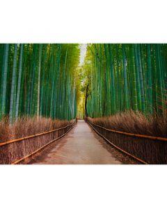 DD118630 Designwalls Fototapete, Bambus Walk