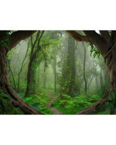 DD118632 Designwalls Fototapete, Tropical Forest