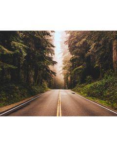 DD118636 Designwalls Fototapete, Road Trip