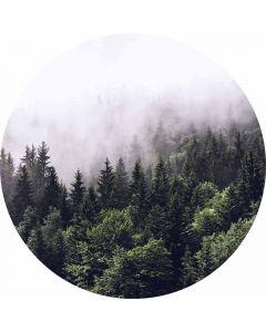 DD119184 Designwalls 2.0  Fototapete, Foggy Forest