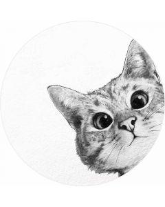 DD119211 Designwalls 2.0  Fototapete, Sneaky Cat
