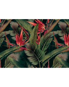 ADD120243 Cuba AS-Creation Tapete, Vliestapete